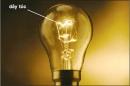 Bài 22.9 trang 52 Sách bài tập (SBT) Vật lí 7