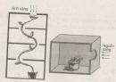 Bài 5 trang 52 Sách bài tập ( SBT) Sinh 11- Bài tập tự giải