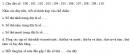 Câu 1, 2, 3 trang 49 Vở bài tập (VBT) Toán 3 tập 2