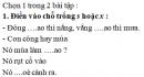 Chính tả - Tuần 33 trang 63 Vở bài tập (VBT) Tiếng Việt 2 tập 2