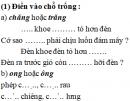 Chính tả - Tuần 34 trang 66 Vở bài tập (VBT) Tiếng Việt 2 tập 2