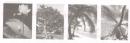 Tiết 9 – Bài luyện tập - Tuần 35 trang 77 Vở bài tập (VBT) Tiếng Việt 2 tập 2