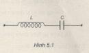 Câu 5.6 trang 31 sách bài tập Vật lí 12 Nâng cao