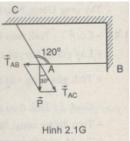 Bài 2.1 trang 21 Sách bài tập Vật lí 10 Nâng cao