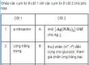 Bài 3.28 trang 24 Sách bài tập (SBT) Hoá 12 Nâng cao