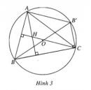 Bài 4 trang 5 SBT Hình học 10 Nâng cao