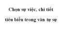 Soạn văn 10: Chọn sự việc, chi tiết tiêu biểu trong văn tự sự