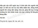 Câu 5 trang 37 Vở bài tập Khoa học 5
