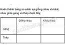 Câu 2 trang 44 Vở bài tập Khoa học 5