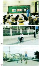 Câu 2 trang 38 Vở bài tập Khoa học 5