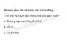 Câu 4 trang 50 Vở bài tập Khoa học 5