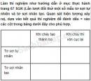 Câu 3 trang 57 Vở bài tập Khoa học 5