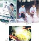 Câu 1 trang 56 Vở bài tập Khoa học 5