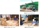 Câu 5 trang 24 Vở bài tập Địa lí 4
