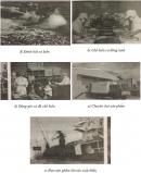 Câu 4 trang 64 Vở bài tập Địa lí 4