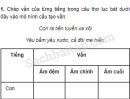 Chính tả - Tuần 17 trang 118 Vở bài tập (VBT) Tiếng Việt 5 tập 1