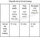Tiết 3 – Tuần 18 – Ôn tập cuối học kì 1 – VBT Tiếng Việt 5