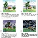 Câu 2 trang 53 Vở bài tập Khoa học 4