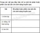 Câu 4 trang 63 Vở bài tập Khoa học 4