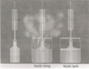 Câu 2 trang 69 Vở bài tập Khoa học 4
